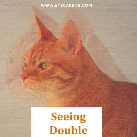 double vision - seeing double